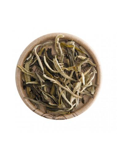 """""""Moonlight"""" White Himalaya tè bianco - La Pianta del Tè shop online"""