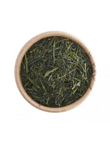 Japan Gyokuro BIO tè verde - La Pianta del Tè shop online