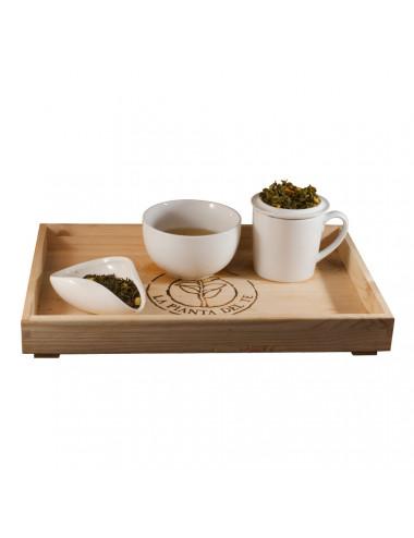Tè Japan Matcha al Limone tea taster - La Pianta del Tè vendita online