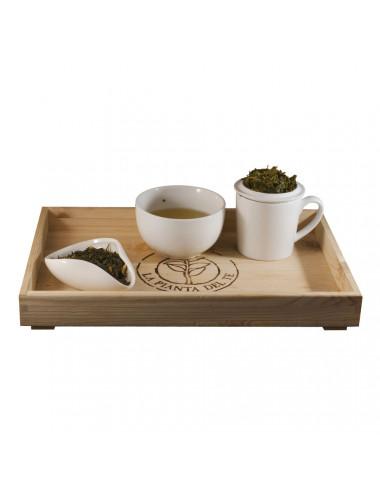 Tè verde all' Arancia BIO tea taster - La Pianta del Tè vendita online
