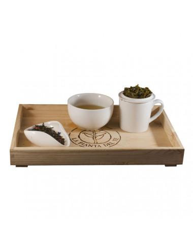 Tè Rugiada di Primavera tea taster - La Pianta del Tè vendita online