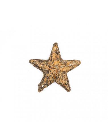 Tè verde pressato a forma di stella - La Pianta del Tè shop online