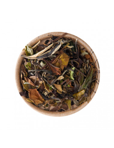 Pai Mu Tan BIO tè bianco - La Pianta del Tè shop online