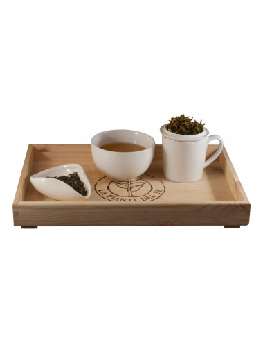 Tè Jasmine tea taster - La Pianta del Tè vendita online