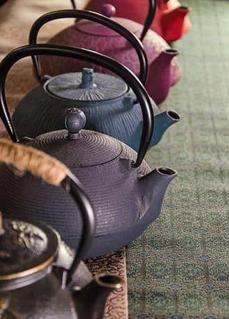 oggettistica-accessori-vendita-la-pianta-del-te-